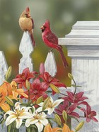 Lilies And Cardinals