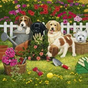 Garden Puppies
