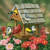 Backyard Birds Fall Feast
