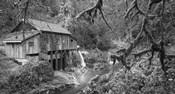 Cedar Creek Grist Mill B&W
