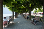 People sitting on benches among trees at lakeshore, Lake Como, Cernobbio, Lombardy, Italy