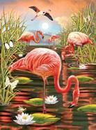 Flamingos-Vertical