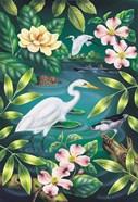 River Egret