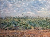 Wheatfield with Lark, 1887