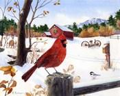 Cardinal Mornings