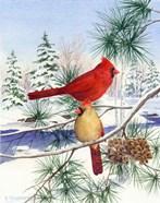 Cedar Farms Cardinals II