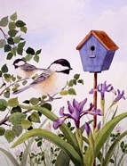 Chickadees And Iris