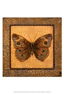 Crackled Butterfly - Buckeye