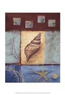 Aquamarine Conch