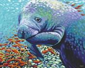 Sea Sweetheart II
