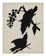 Audubon Silhouette III