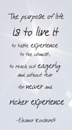 The Purpose of Life is to Live It -Eleanor Roosevelt