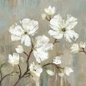 Sweetbay Magnolia I