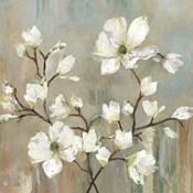 Sweetbay Magnolia II