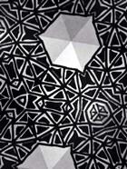 Buckminster II