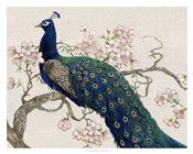 Peacock & Blossoms II