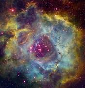 Rosette nebula (NGC 2244) in Monoceros