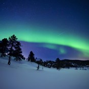Aurora Borealis and a shooting star in the woods of Troms County, Norway