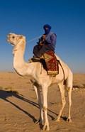 Bedouin man on camel, Douz, Sahara Tunisia, Africa