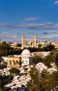 Bourguiba Mausoleum and cemetery in Sousse Monastir, Tunisia, Africa