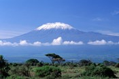 Africa, Tanzania, Mt Kilimanjaro, landscape and zebra