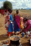 Maasai Women Cooking for Wedding Feast, Amboseli, Kenya