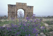 Ruins of Triumphal Arch in Ancient Roman city, Morocco