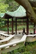 Tai Chi Chuan in the Chinese Garden Pavilion at Kowloon Park, Hong Kong, China