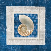 Sea Shell II on Blue