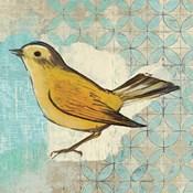 Wilsons Warbler II