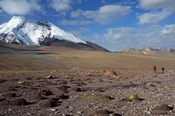 Towards The Summit Of Kongmaru La, Markha Valley, Ladakh, India