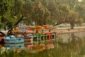 Boat reflection, Delhi, India