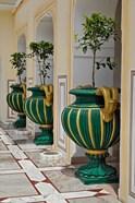 Plant Pots, Raj Palace Hotel, Jaipur, India
