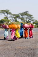 Women Carrying Loads on Road to Jodhpur, Rajasthan, India