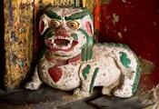 Animal by Hemis Monastery, Ladakh, India