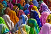 Women in colorful saris, Jhalawar, Rajasthan, India