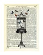 Bird Cage & Butterflies