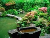 Green Zen Garden, Kyoto, Japan