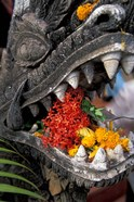 Flower Offerings in Stone Dragon's Mouth, Laos