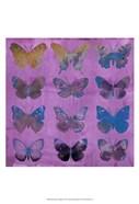 Butterflies on Magenta