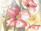 Soft Poppies I