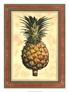 Pineapple Splendor I