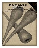 Vintage Seed Pack IV
