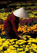 Gardens with Woman in Straw Hat, Mekong Delta, Vietnam