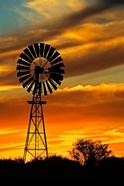 Windmill, Oodnadatta Track, Outback, Australia