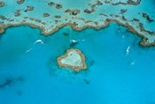 Australia, Whitsunday Islands, Heart Reef