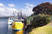 Fishing Boats, Tauranga Harbor, Tauranga, New Zealand