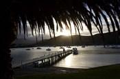 Waikawa Bay, near Picton, Marlborough Sounds, South Island, New Zealand