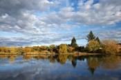Waikato River near Taupo, North Island, New Zealand