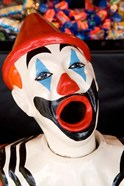 Laughing Clown, Bay of Plenty, North Island, New Zealand